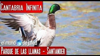 Parque de las Llamas (Santander)