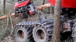 Maquinaria de tala en el pinar de Requejo